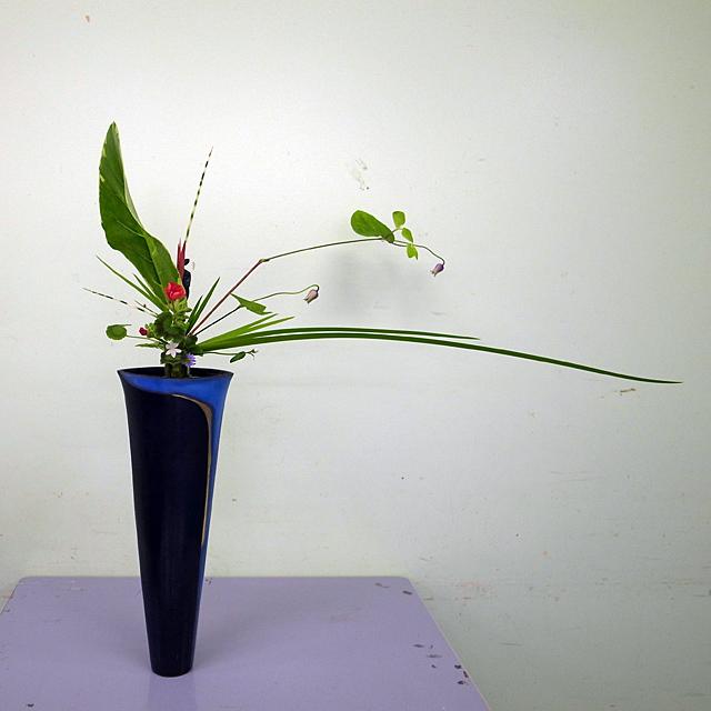立花 メリタリーフ、ベル鉄線、オクロレウカ、縞ふとい、ヘレコニア、ゼラニウム、ヒメヒオウギ、クロトン、小しだ、都忘れ