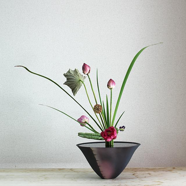 立花新風体 蓮、燕子花、ミリオグラタス