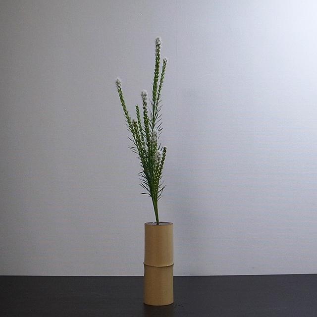 生花正風体 リアトリス