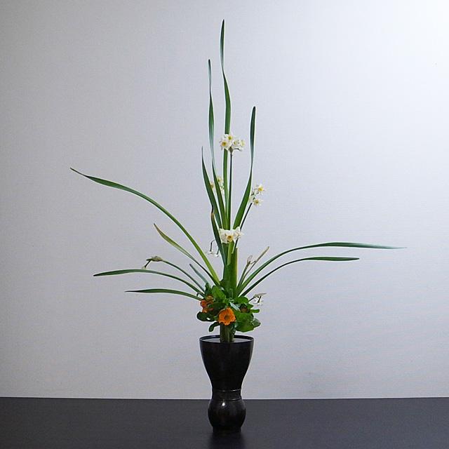 古典立花 水仙、金盞花、著莪