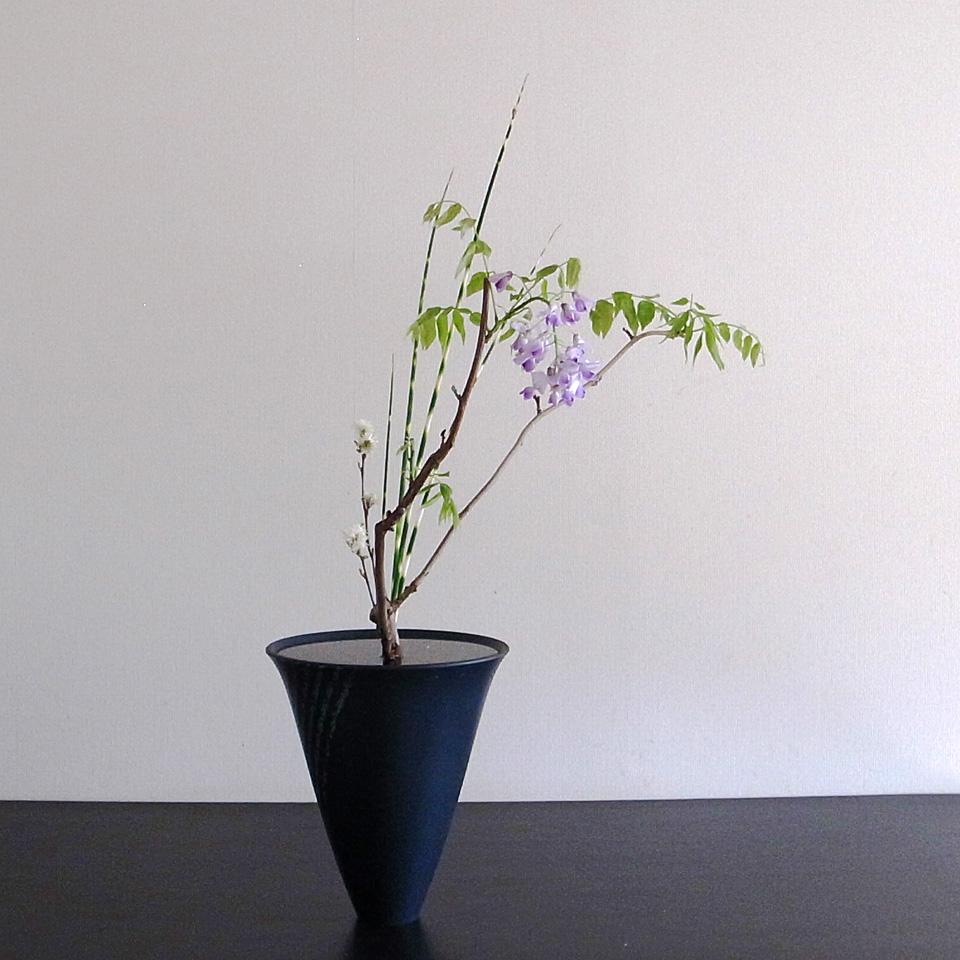 生花新風体 藤、縞ふとい、万作