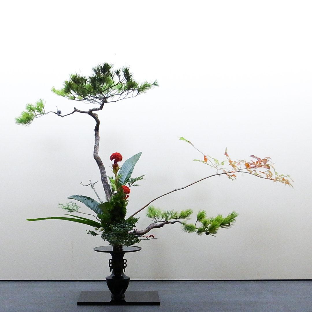 古典立花 松、夏はぜ、鶏頭、枇杷、著莪、桧、伊吹、柘植、若松、うめもどき、小菊