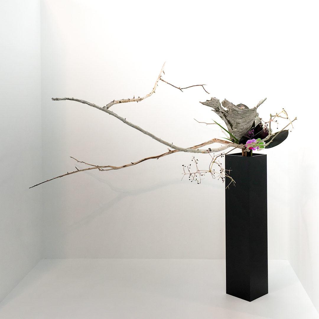 胡蝶蘭、日々草、紫式部、黒ゴム、こしあぶら、藪蘭、曝木、木の皮