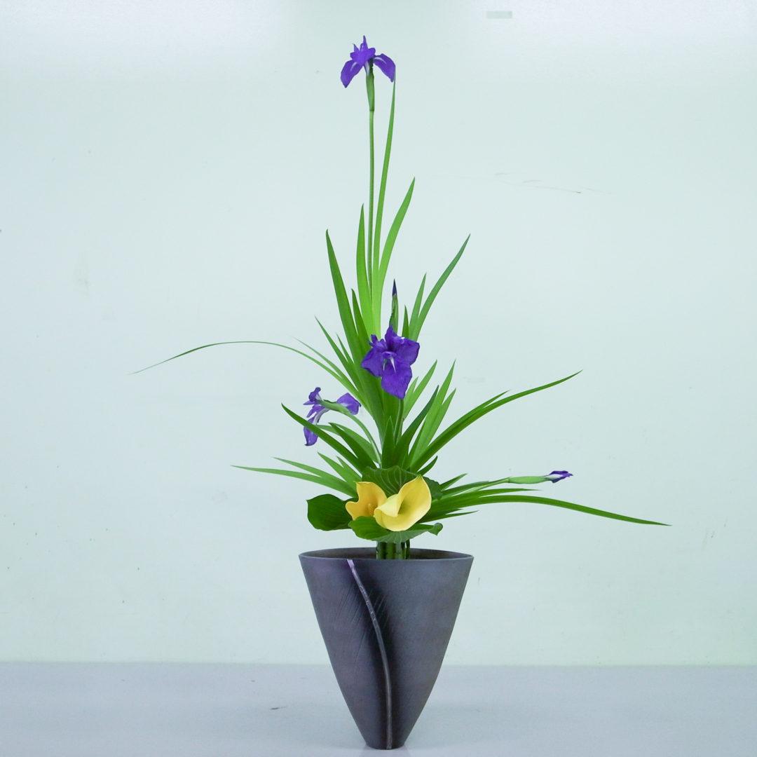 立花正風体 燕子花、カラー、擬宝珠